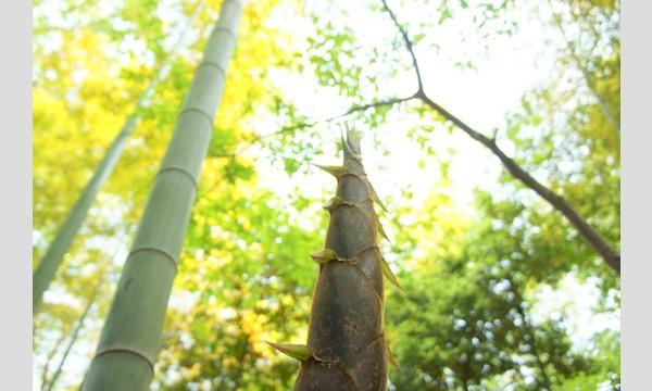 アクトインディ株式会社(いこーよ)の本気のたけのこ掘り!と 木のおもちゃづくり in 吾笑樂(飯能市)イベント