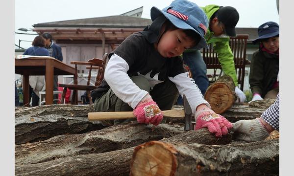 3歳から山仕事に挑戦!しいたけの菌打ち&ピザ窯でピザ作りin狭山市 イベント画像1