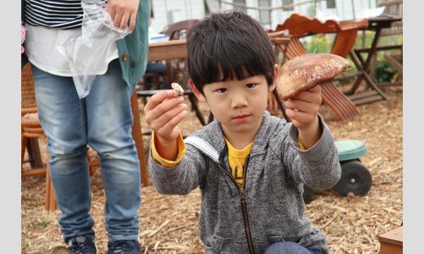 3歳から山仕事に挑戦!しいたけの菌打ち&ピザ窯でピザ作りin狭山市 イベント画像2