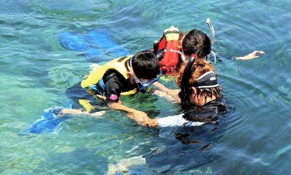10月10日(日)サンゴの植樹体験をしてみよう ~伊豆の海の環境を考える~ イベント画像3