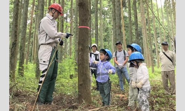 6歳になったら机を作ろう!木こり&机作り体験in山武 イベント画像1
