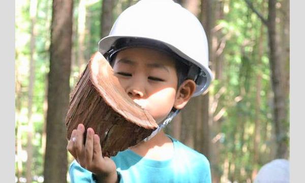 【2021年】6歳になったら机を作ろう!木こり&机作り体験in高知 イベント画像1