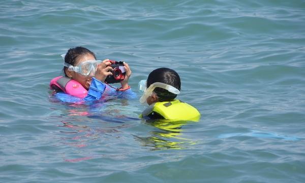 アクトインディ株式会社(いこーよ)の8月29日(日)水中カメラマンのお仕事をしよう!@千葉県イベント