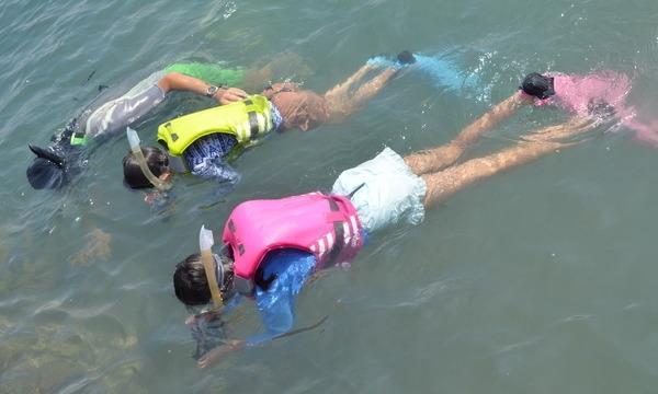 8月29日(日)水中カメラマンのお仕事をしよう!@千葉県 イベント画像2