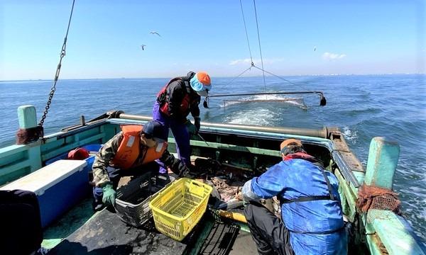 3月13日(土)漁師のお仕事体験をしよう!@千葉県 イベント画像1