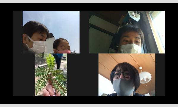 アクトインディ株式会社(いこーよ)の【オンライン】近所の公園で自然体験!樹木医とおもしろ植物ビンゴに挑戦イベント