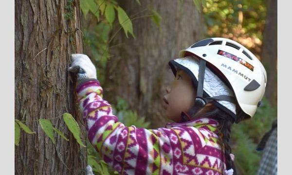 6歳になったら机を作ろう!机作り&森林学習in長野 イベント画像1