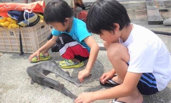 アクトインディ株式会社(いこーよ)の10月2日(土)~3日(日)佐渡島の漁師のお仕事をしよう!イベント