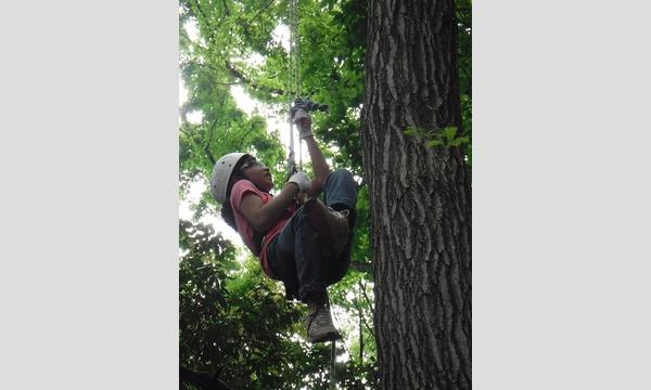 アクトインディ株式会社(いこーよ)のいざ 樹上の世界へ ツリークライミングに挑戦! in 狭山イベント
