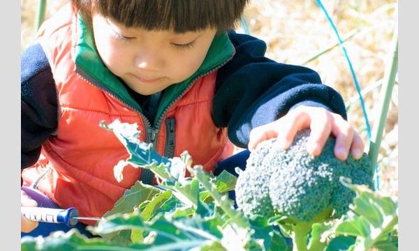 植えて・育てて・食べる!子供の心を豊かにする植育イベント@オンライン イベント画像1