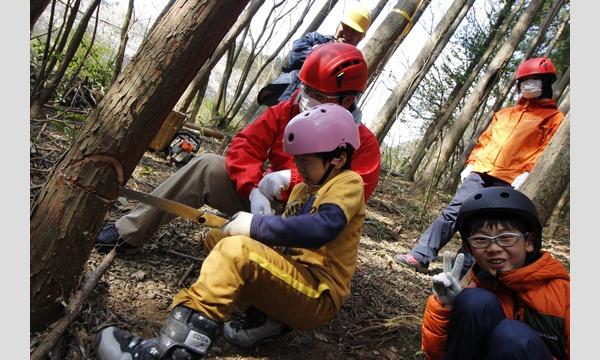 山で木を切り倒す!7歳からの「木こり&倒した木で工作体験」in飯能 イベント画像1