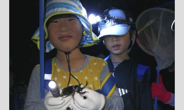 3歳からのはじめてのカブトムシさがし in 狭山 イベント画像2