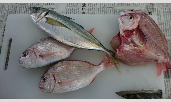 9/16(月・祝)浜の調理師のお仕事をしよう!@茨城県 イベント画像2