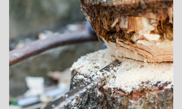 森林のお仕事に挑戦しょう!本気の木こり体験! in 飯能市 イベント画像3
