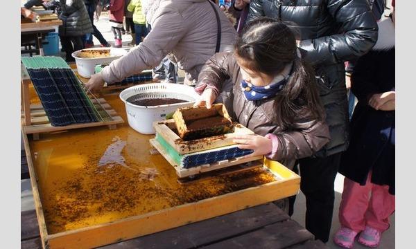 アクトインディ株式会社(いこーよ)の9/22(日)海苔作りのお仕事をしよう!@千葉県イベント
