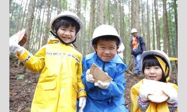 【2020年】6歳になったら机を作ろう!木こり&机作り体験in高知 イベント画像1