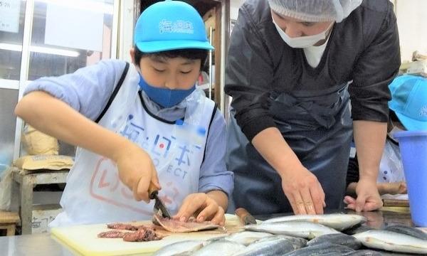 6月5日(土)ひもの作りのお仕事をしよう!@神奈川県 イベント画像1