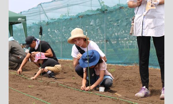育てて食べよう手作り味噌! in 狭山市 イベント画像2