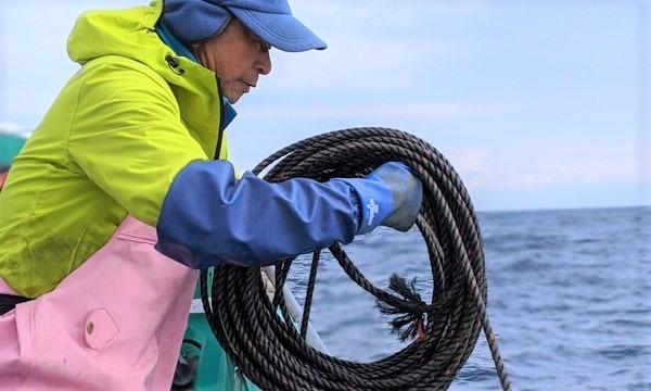 3月20日(土)深海漁&深海生物調査のお仕事@静岡県 イベント画像3