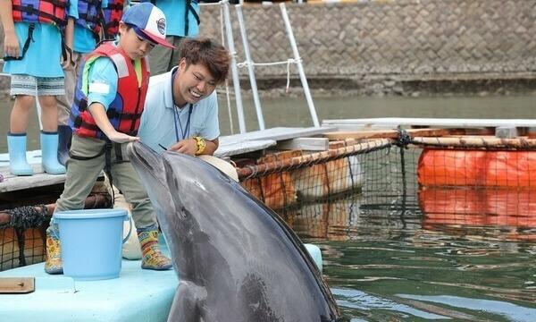 アクトインディ株式会社(いこーよ)の10月24日(日)イルカ飼育員のお仕事をしよう@静岡県イベント