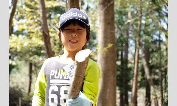 春の若葉を探せっ! 葉っぱの天ぷら食べ隊! in ロッジ水野の森 イベント画像1