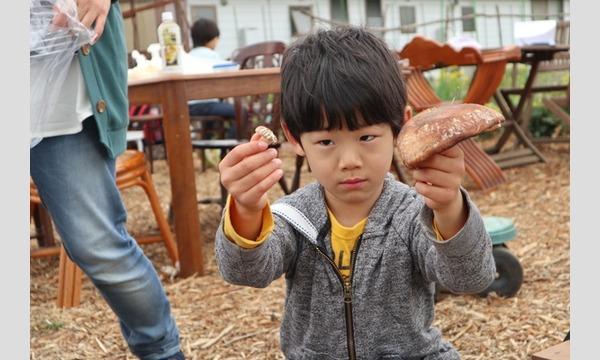 3歳から山仕事に挑戦! しいたけの菌打ち&ピザ窯でピザ作り in 狭山市 イベント画像2