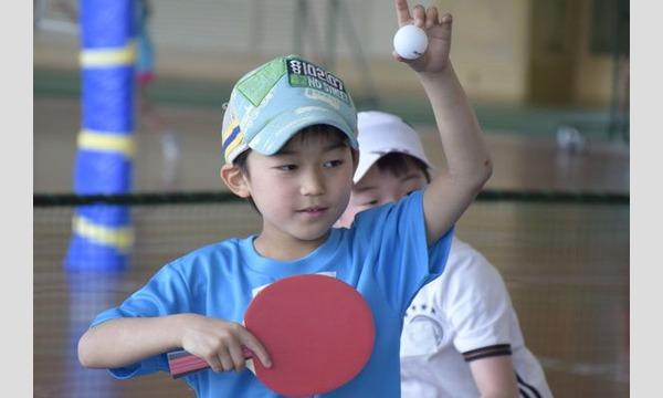 やってみたいを実現!原田コーチの親子卓球教室in東京(礼武道場) イベント画像1