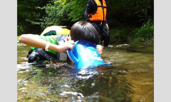 6歳から挑戦!真夏の清流探検 in飯能市 イベント画像3