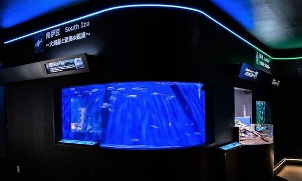 アクトインディ株式会社(いこーよ)の9月18日(土)水族館の深海魚をPRしよう!@静岡県イベント