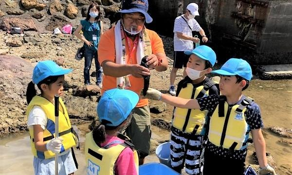 アクトインディ株式会社(いこーよ)の8月22日(日)無人島を探検!観光ツアーを作るお仕事をしよう@静岡県イベント