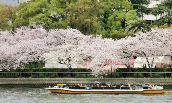 「大川さくらクルーズ」乗船券 イベント画像2