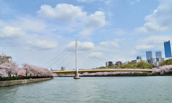 「大川さくらクルーズ」乗船券 イベント画像3