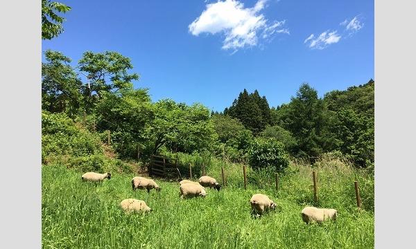 南三陸町「わかめ羊」×三笠会館 in東京イベント
