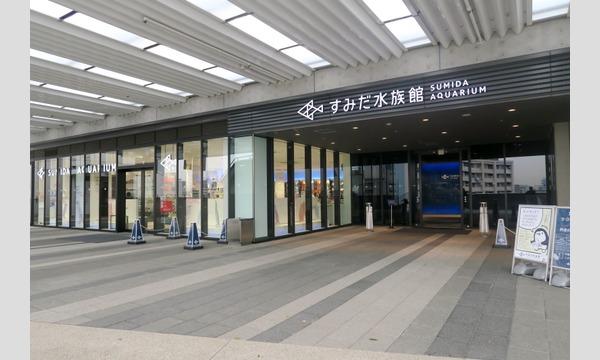 メモライズ撮影会 8月2日(日)   押上エリア 「すみだ水族館」撮影会 イベント画像2