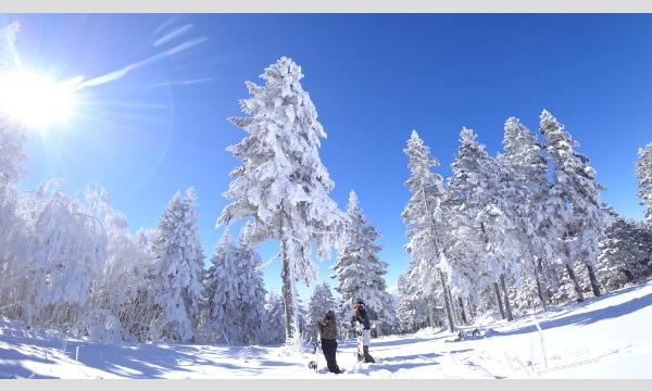 【最大1,900円OFF】竜王スキーパークリフト 早割券 イベント画像2