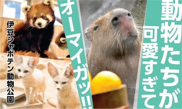 伊豆シャボテン動物公園【距離感ゼロのふれあい動物園】 イベント画像1