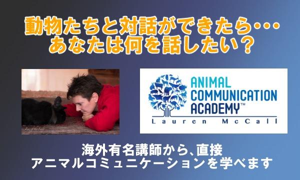 アニマルコミュニケーション 基礎講座(2日間) イベント画像1