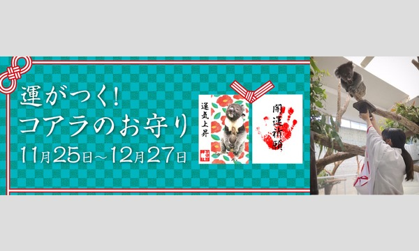 12/1(火)【整理券】開運祈願 運がつく!コアラのお守り 令和2年12月1日 イベント画像1