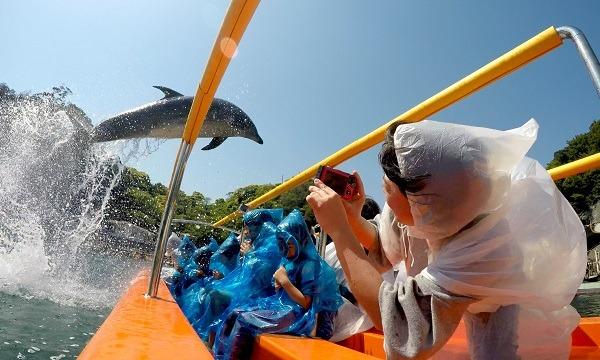 下田海中水族館 入場券 【最大300円割引】 イベント画像1