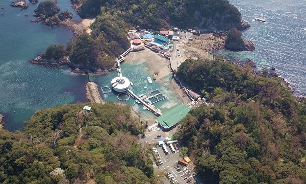 下田海中水族館 入場券 【最大300円割引】 イベント画像3