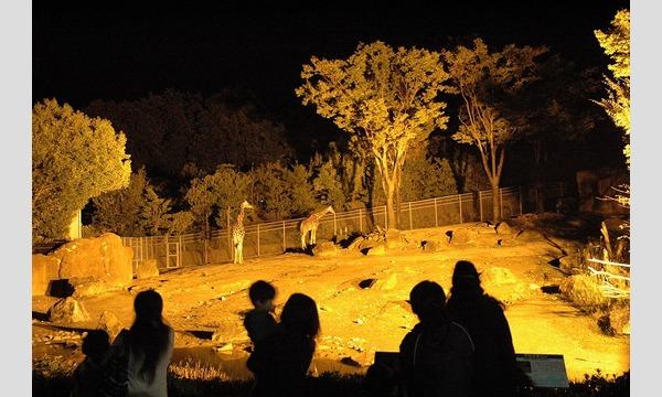 いしかわ動物園 ナイトズー2020 入園予約申込/8月開催分 イベント画像1
