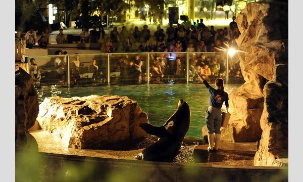 いしかわ動物園 ナイトズー2020 入園予約申込/8月開催分 イベント画像2