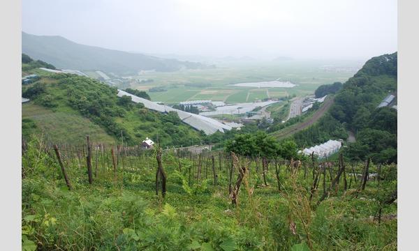 12月7日(土)AKOMEYA TOKYOが提案する、日本ワインのお祭り「日本ワインとごはん」開催! イベント画像3