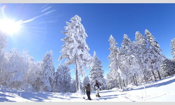 日本スキー場開発限定!!【2019‐2020 WINTER SEASON】NSDスノーリゾート共通リフト券 イベント画像3