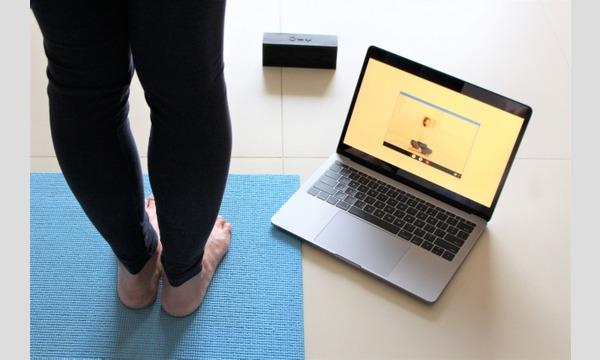 毎朝の瞑想ヨガ 3月クラス(単月チケット) イベント画像1