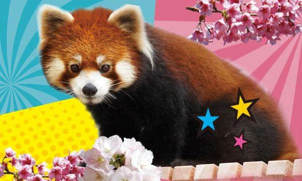 【3月13日(土)入園分】東山動植物園入園予約 イベント画像1