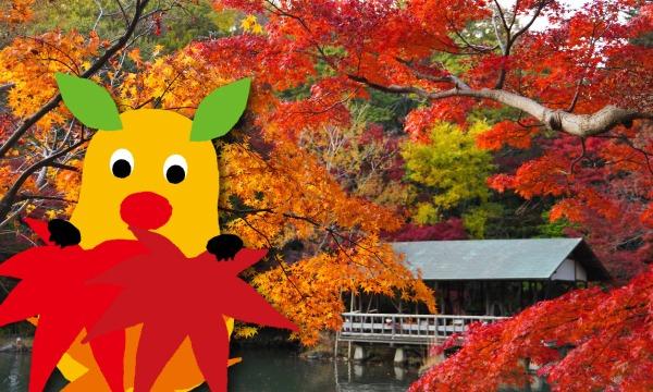 【11月29日(日)入園分】東山動植物園入園予約 イベント画像1