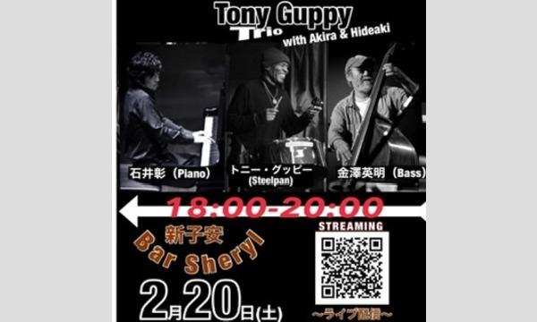 2/20(土) TONY GUPPY  TRIO   with Akira & Hideaki イベント画像1