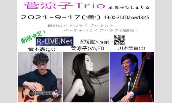新子安しぇりるの9/17(金)菅涼子Trio at新子安しぇりるイベント