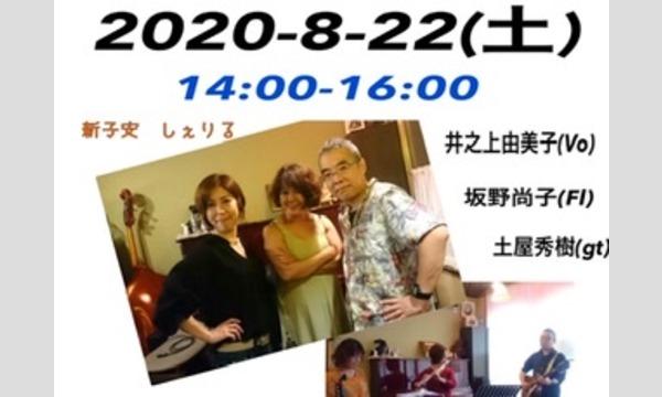 新子安しぇりるの8/22(土)14:00-16:00井之上由美子坂野尚子土屋秀樹トリオライブイベント